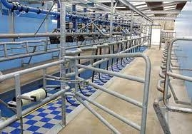 Ezi-action® Drum Pumps are used in dairy hygiene parlours